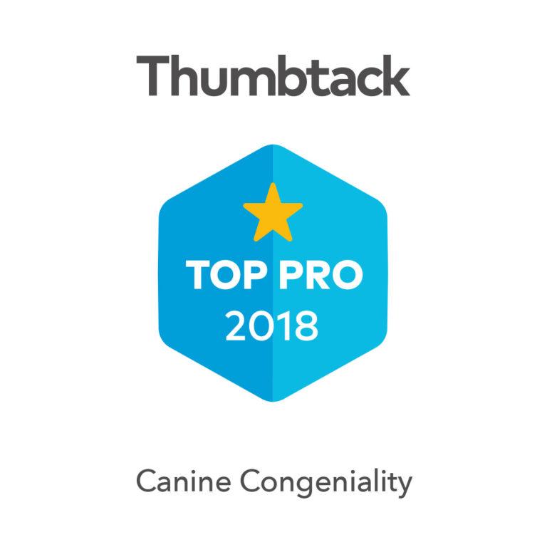 Thumbtack Top-Pro-Badge