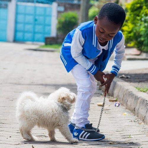 Black boy with small dog on leash