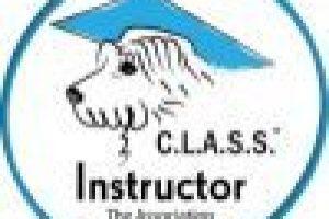 CLASS-instructor_logo_web
